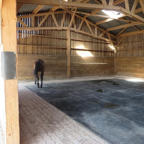 pension-chevaux-a-la-retraite-randeynes-500x500 Ferme équestre de Randeynes
