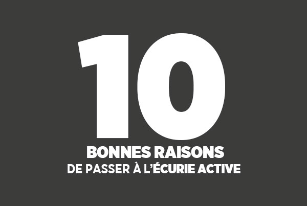 10bonnes-raisons-ecurie-active 10 bonnes raisons de passer à l'écurie active