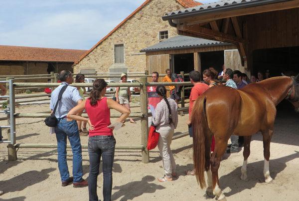 convaincre-proprietaires-ea-2021-600x403 Convaincre les propriétaires de mettre leur cheval en pension dans votre écurie active