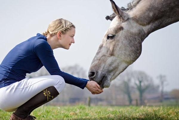 relation-homme-cheval-600x403 L'écurie active créatrice de nouvelles interactions hommes cheval